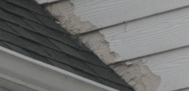 How to Protect Your Home from Water/Moisture Damage
