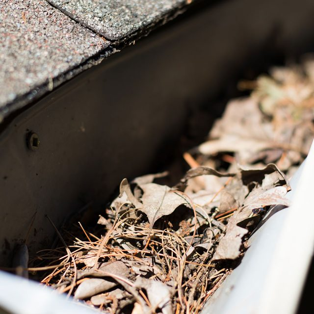 clogged gutters contractor