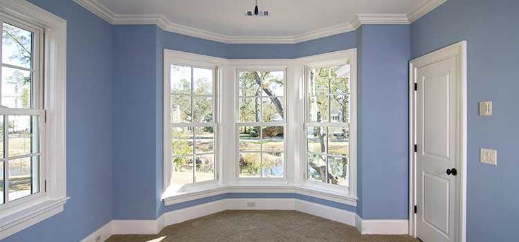 vinyl windows at a low price point