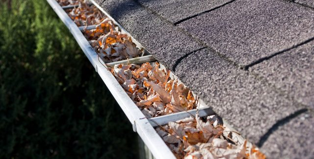Do Gutter Guards Work, and Other Gutter FAQs
