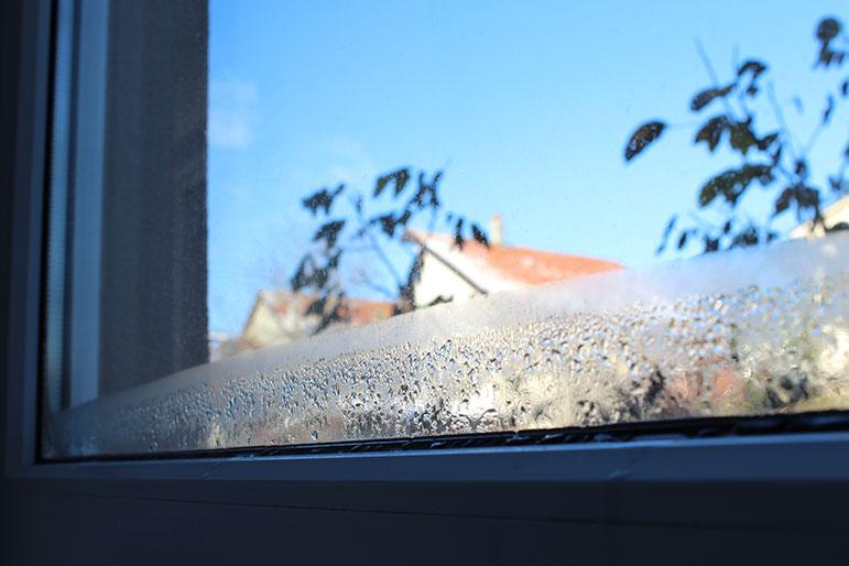 builder-grade vs. replacement windows